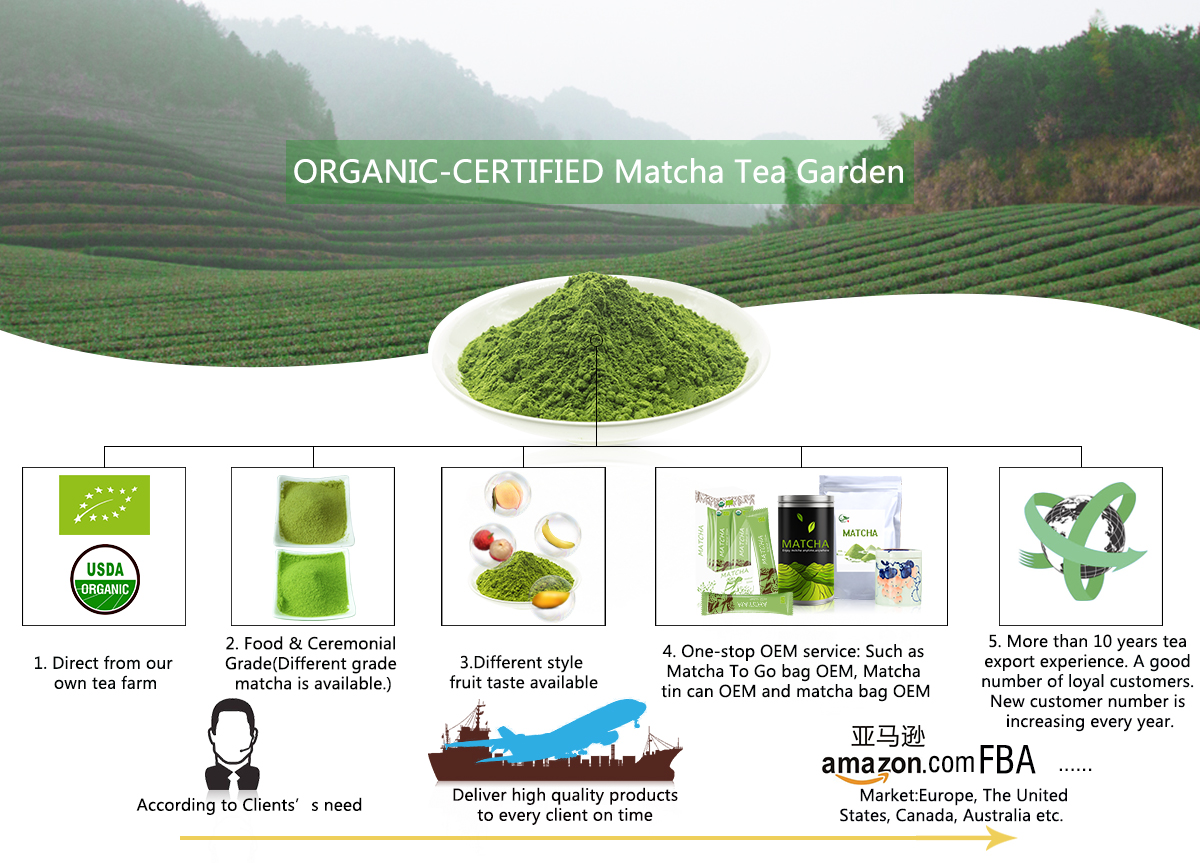 Factory Direct Sale Matcha Dropshipping | Runming Tea Company