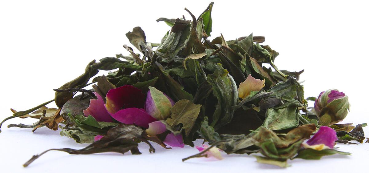 Chinese White Tea - Rose White Peony Tea | Runming Tea Company